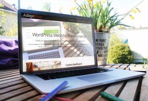 WordPress Maintenance and Management Company