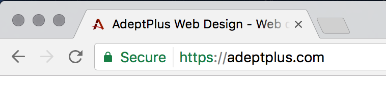 AdeptPlus HTTPS SSL Website